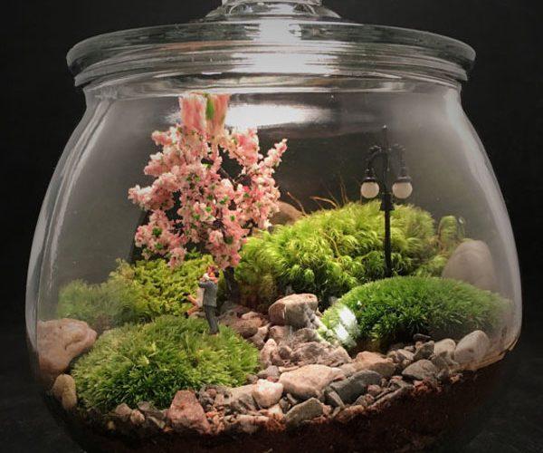 آموزش تراریوم- باغ شیشه ای